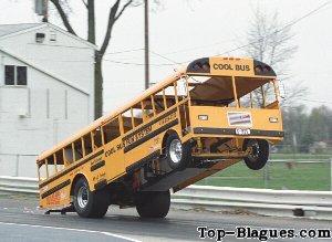 photo bus rigolote